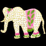 La signora degli elefanti